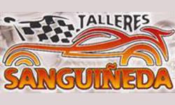talleres_Sanguineda